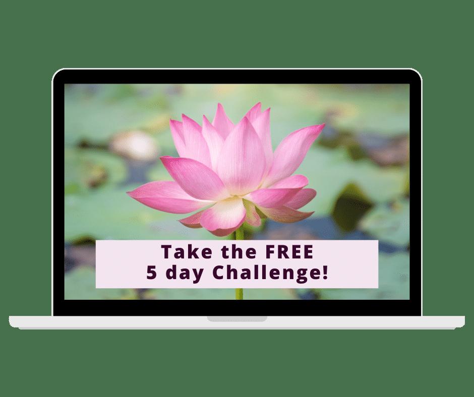 mindfulness challenge